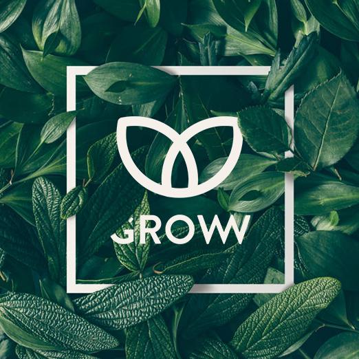 Vignette projet Groww
